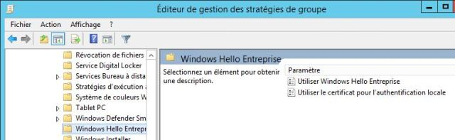 windows_hello4