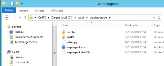 waptagent01Capture
